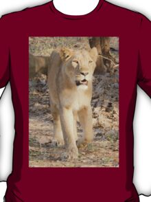 Lioness on the move T-Shirt