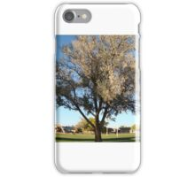 Standing Tree iPhone Case/Skin
