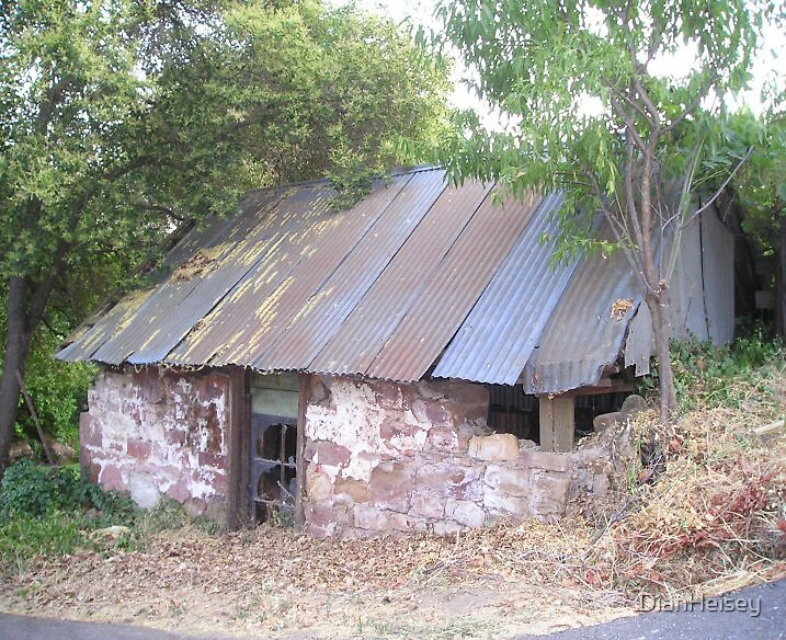 Old Building at Knott's Ferry by DianHeisey