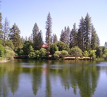 Columbia College Pond by DianHeisey