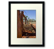 Outback fence Framed Print