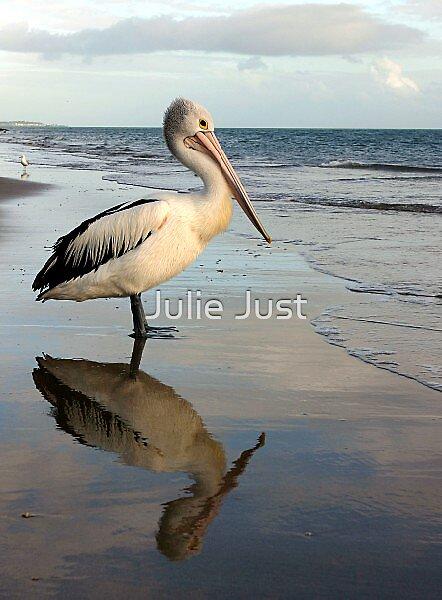 Pelican Bay by Julie Just