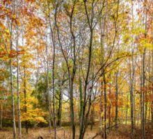 Autumnal Wood Sticker