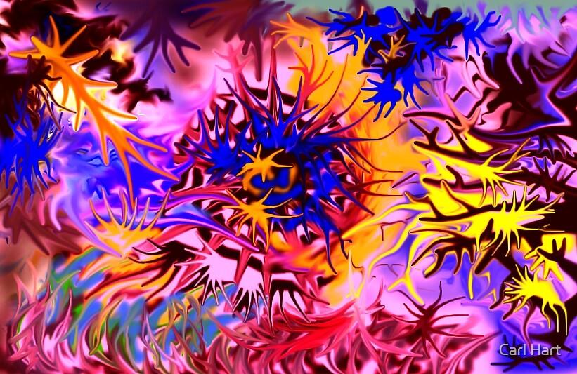 Corelation by Carl Hart