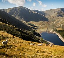 Mardale Head - Haweswater by David Lewins
