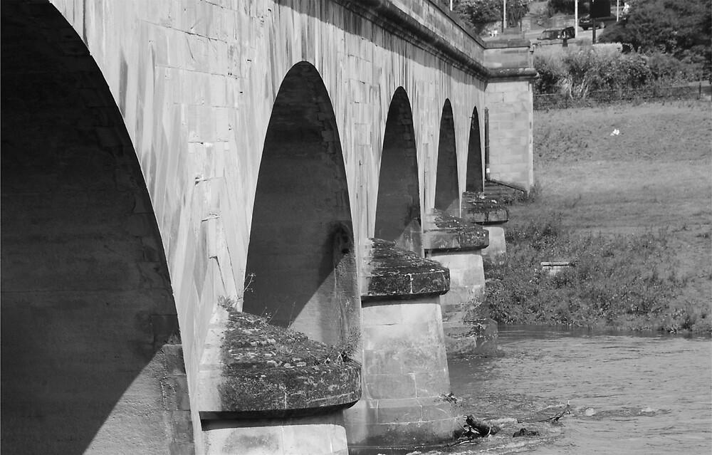 Bridge by Maddie