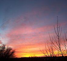 Sunset  by jcodak