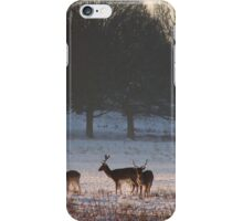 The Young Deer In The Snow iPhone Case/Skin