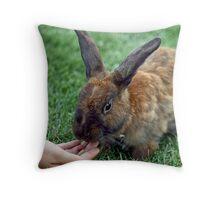 The Brown Rabbit Throw Pillow