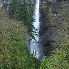 Multnomah Falls by oscarcwilliams