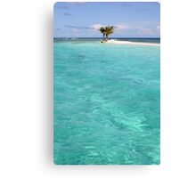 Three Palm Island 2 Canvas Print