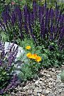 Flower Garden by Holly Werner