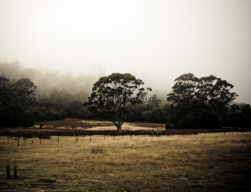 Central Highlands Morning by Kelly McGill