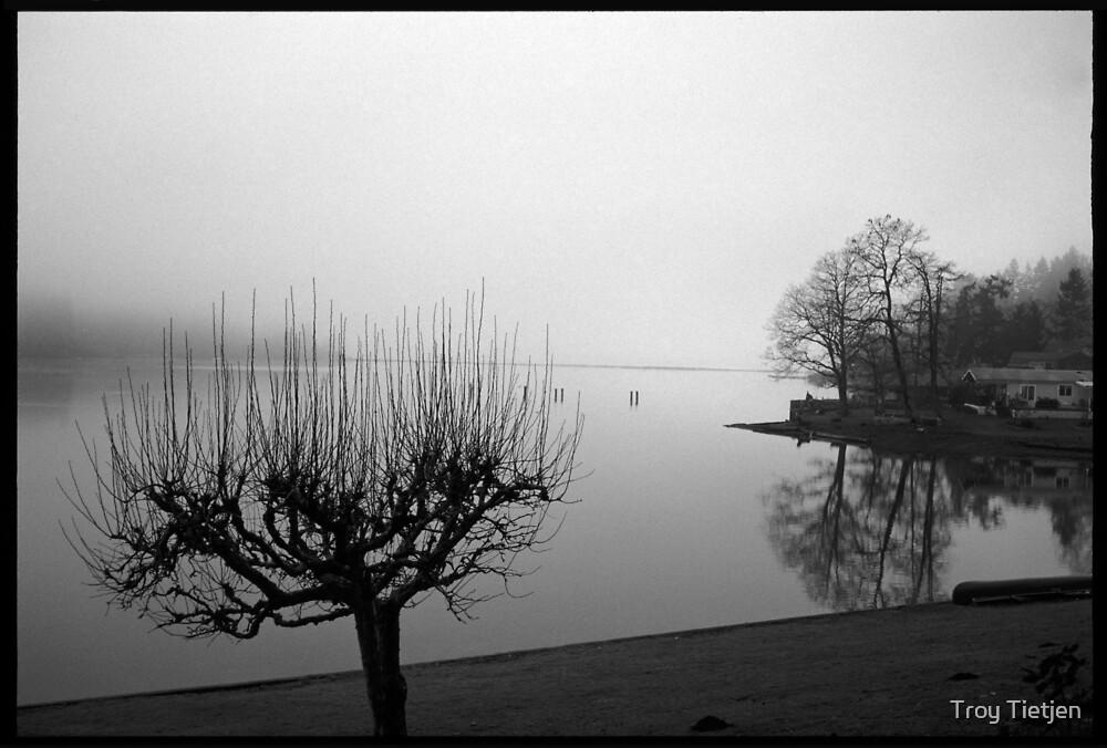 calm mist by Troy Tietjen