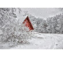 Red Shed In The Snow Photographic Print