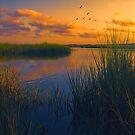 As the Sun Sets by John Rivera