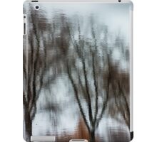 Willow reflection iPad Case/Skin