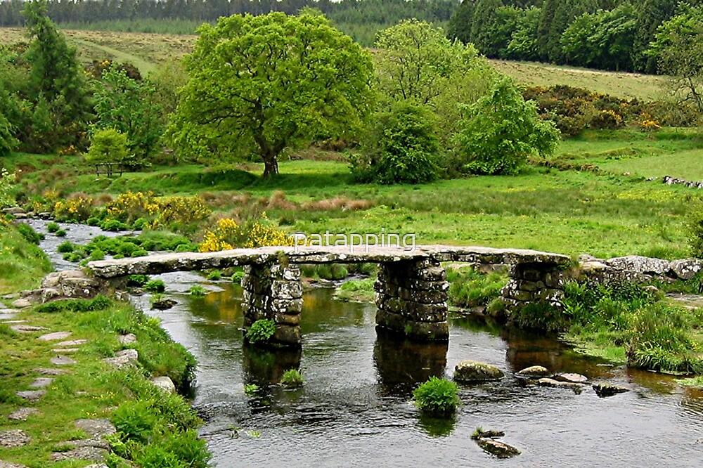Bridge Dartmoor U.K by patapping