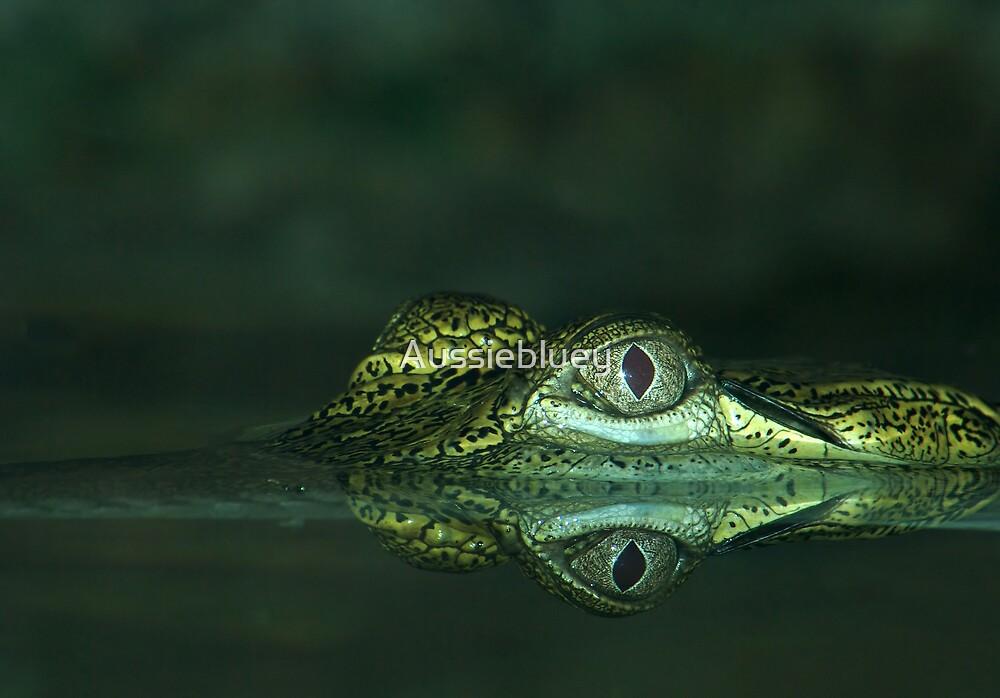 Eye of the Croc. by Aussiebluey