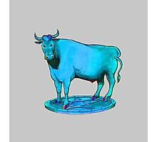 Blue bull graphic design Photographic Print