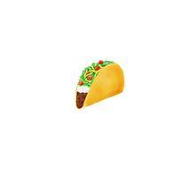 Taco by Melissa Middleberg