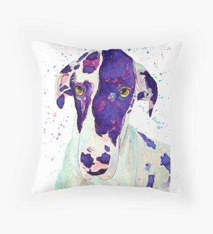 Big nose - great dane dog merchandise Throw Pillow