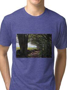 Forest walks  Tri-blend T-Shirt