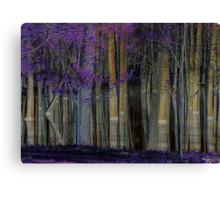 A Forest of Reflections Canvas Print