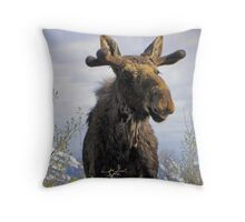 Young Bull in the Tetons Throw Pillow