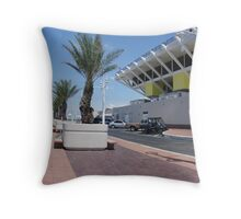 the peir at st pete Throw Pillow