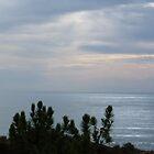tranquil sunset by Jennifer Standing