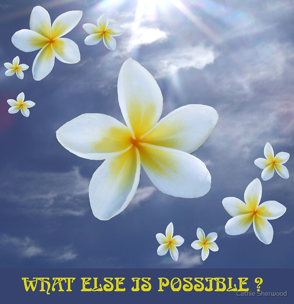 "Floating Frangi with caption ""What Else Is Possible?"" by Cathie Sherwood"