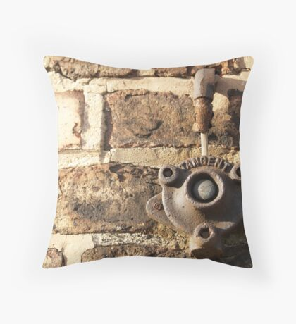 Decay: tangent Throw Pillow