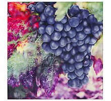 Blue Grapes by nitrams