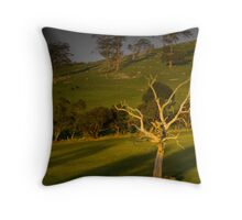 LYSTERFIELD LATE AFTERNOON Throw Pillow