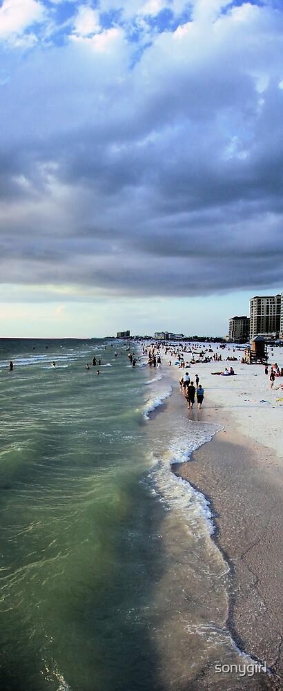 the beach by sonygirl