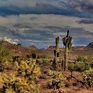 Arizona Desert Landscape by DHParsons