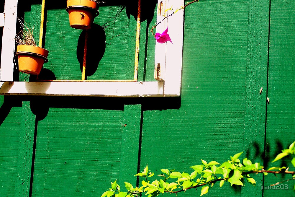 pots and flower by jram1203