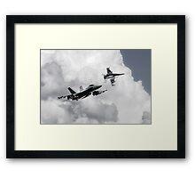 Hornet Sting Framed Print