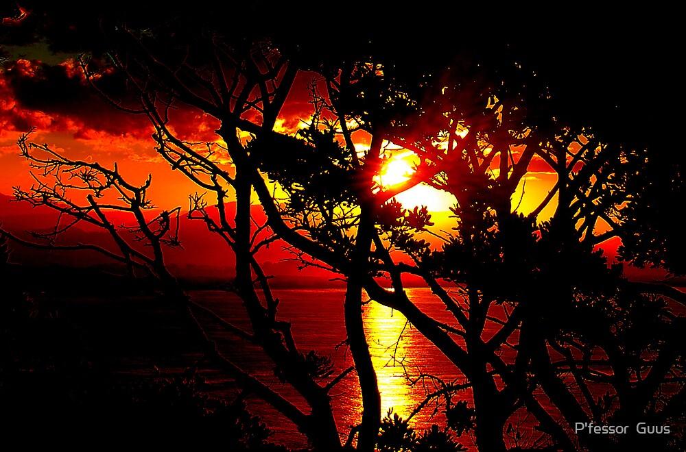 Australian Sunset by Gus Buckner