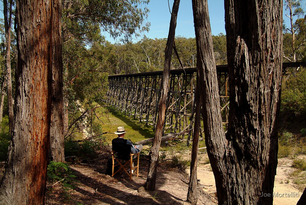 Trestle Bridge Colquhoun State Forest by Joe Mortelliti