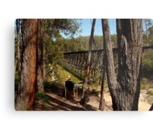 Trestle Bridge Colquhoun State Forest Metal Print