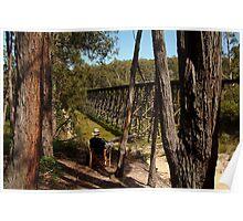 Trestle Bridge Colquhoun State Forest Poster