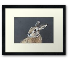 the hares stare Framed Print