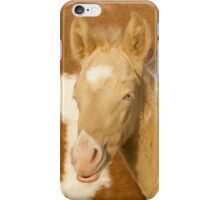 Blue Eyed Colt iPhone Case/Skin