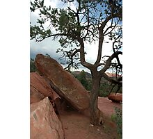Life In The Garden Of The Gods Photographic Print