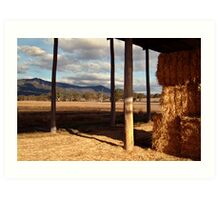 Hay Shed,Eversley, Mt Cole State Park Art Print