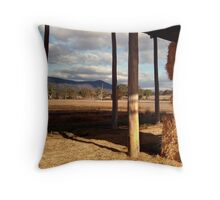 Hay Shed,Eversley, Mt Cole State Park Throw Pillow