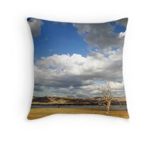 Too little, too late! Throw Pillow