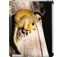 Clinging Monkey iPad Case/Skin